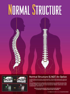 Normal Structure
